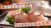 乙型鏈球菌個案上月起大增 防護中心指曾處理或食淡水魚生
