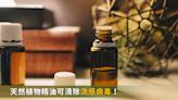 精油也能抗病毒!研究:嗅聞15分鐘,流感病毒清除95%
