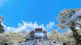 桃園旅遊正夯,全台最長索橋,網美景點拍起來!