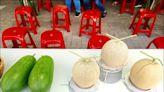 澎湖特有種瓜果 復育有成 - 生活 - 自由時報電子報