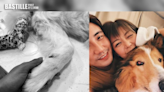 洪永城愛犬病逝 梁諾妍感難過:不會忘記你放下你 | 娛圈事