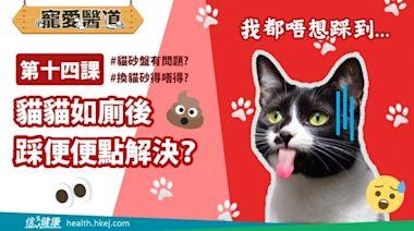 信網信報視頻 -- 【寵愛醫道】第十四課:貓咪如廁後踩便便點解決?