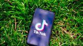 印度禁59款中國app「危及國安」 TikTok更被iOS14抓包偷看用戶剪貼簿