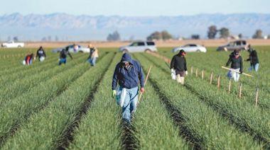基金特蒐/ESG概念農業商品 犀利