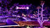 粉紅燈海泡湯踩街嘉年華 全台四大聖誕溫泉季 | 蕃新聞