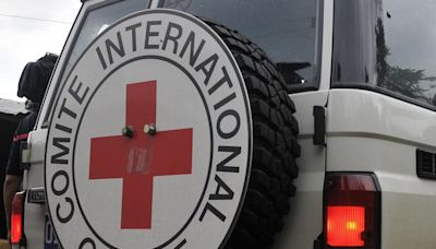 Identifican restos de seis soldados argentinos en tumba colectiva en Malvinas