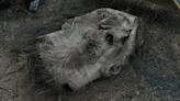 How The Whisperers Return on The Walking Dead