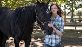 'Black Beauty' reimagines the classic horse story