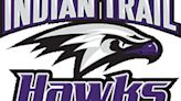 High school boys tennis: Indian Trail's Blagoevs, Tremper's Whynott and Price advance at state