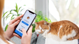 Pawp lets you talk to a vet online now as telemedicine comes to pet owners.