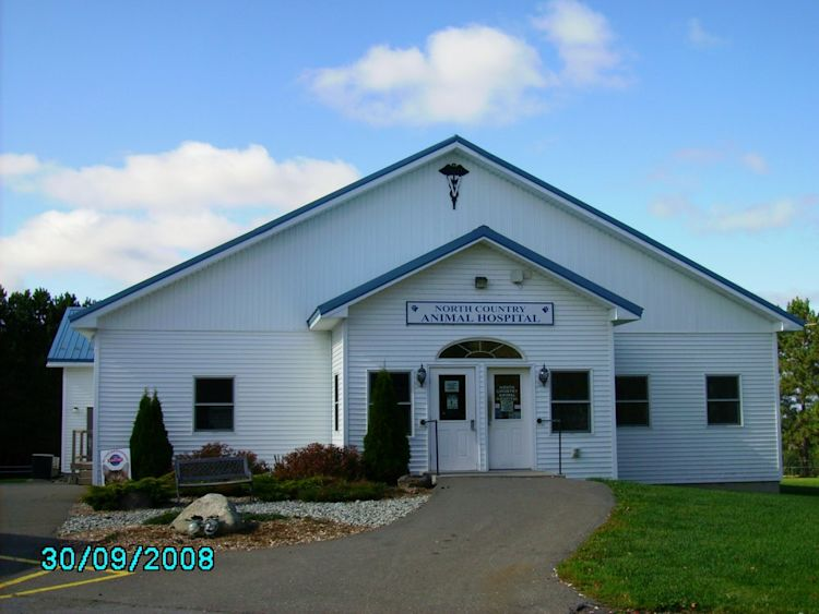 Foley Elisabeth North Country Animal Hospital Caribou Yahoo Local Search Results