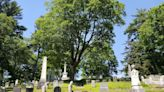 Want to be buried with your pet? You can make that happen at this Maine cemetery.