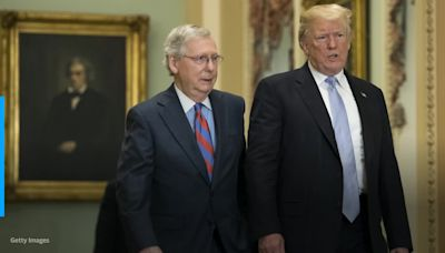 McConnell said 'sucking up' to Trump 'is not a strategy that works': Book