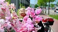 Local heroes: Flower Bike Man