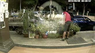 Caught on camera: Man pulls off back-to-back potted plant 'theft' in Geylang (VIDEO)