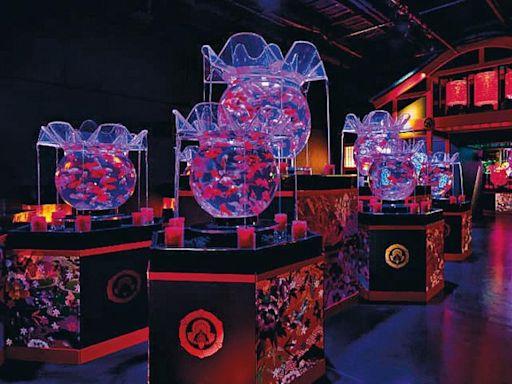 想去東京|疫情影響東京藝術水族美術館將閉館 預計明年重開