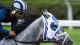 Essential Quality the one to beat in Jim Dandy at Saratoga