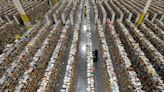 Amazon to hire 150,000 seasonal workers during holiday season