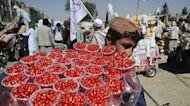 Afghanistan : la nouvelle réalité du pays prend doucement racine