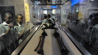 Kenya's New Museum Will Pay Homage to Ancient Man