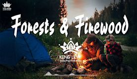 Forests & Firewood Music - Relaxing Magical Music The Best An Indie/Folk/Pop Campfire Playlist ️