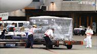 第7批BNT到貨 百萬劑莫德納將抵台