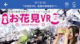 日本天氣網站推花見VR功能 手機隨時隨地可賞櫻