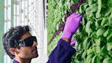 【食力】垂直農場不只多產又省水!美國新創還用它來解決失業問題
