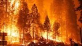 2.2M Acres Burned: 2020 Shatters Fire Season Record In California