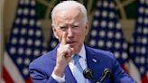 Justice Department domestic terror document could ensnare Biden critics, professor tells Tucker