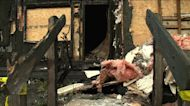 Henrico firefighters rescue woman from fire that killed 3 pets
