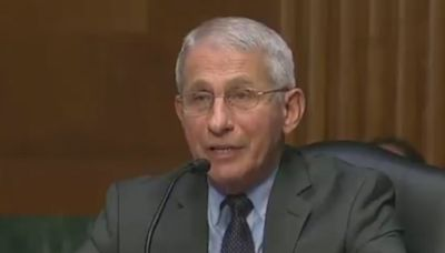 Dr Fauci once again schools Rand Paul after GOP senator peddles Covid misinformation
