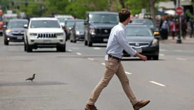 美國人為甚麼爭取把亂過馬路除罪化? - *CUP