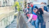 中市潭子區大豐里淹水問題 立委爭取8600萬經費改善 | 台灣好新聞 TaiwanHot.net
