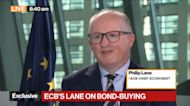 ECB's Lane Says It's Premature to Talk About End of PEPP