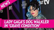 Lady Gaga's Dog Walker Shot While Walking Her Bulldogs: Report