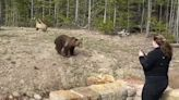 Woman charged for teasing grizzlies in Yellowstone in viral encounter