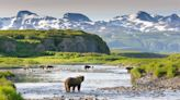 Encounters with bears and whales on a thrilling Alaska cruise