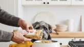 6 Dog Food Delivery Services That Make Life So Much Easier