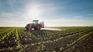 White farmers sue federal government seeking COVID-19 loan forgiveness