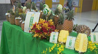 鳳梨進入盛產期 農糧署邀名廚示範料理推廣