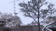 Winter Storm Blankets Albuquerque in Snow