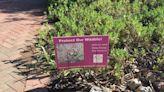 Santa Monica Mountains Fund Distributing 'Poison Free' Yard Signs