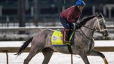 2021 Jim Dandy Stakes horses, contenders, predictions: Handicapping champion reveals picks, best bets
