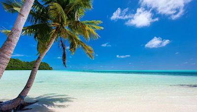 「疫苗」旅遊誰更勝出? 一張圖看懂關島、帛琉優劣 | 蕃新聞