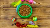 Pet sustainability, or the truth about cats and dogs | Greenbiz
