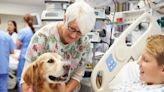 Rowan's Therapy Dog Symposium Goes Virtual For 2020