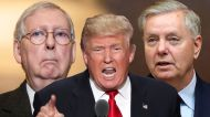 Lindsey Graham says Mitch McConnell was 'indispensable to Trump's success'