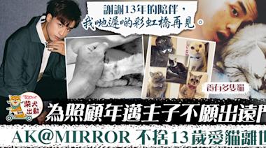 【調教你MIRROR】為照顧家中老貓減少出遠門 AK不捨愛貓離世:彩虹橋再見 - 香港經濟日報 - TOPick - 娛樂