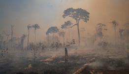 Data raises concerns as Brazil's forest fire season begins